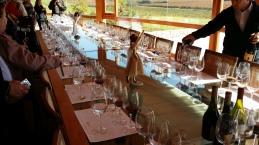 Vinícola Montes Alpha, Chile: uma maravilha
