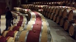 Canto gregoriano para descansar os vinhos